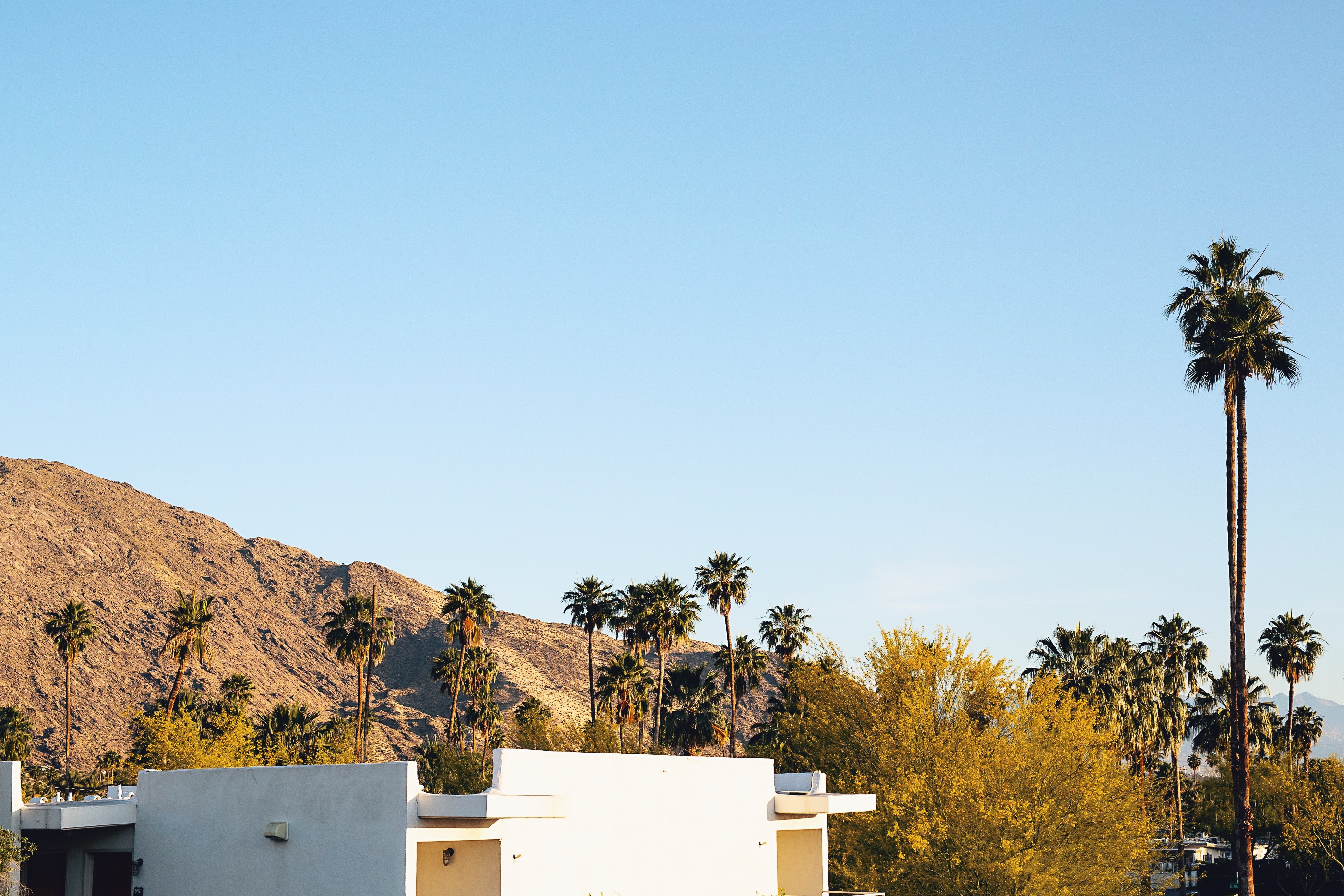 The Ace Hotel & Swim Club, Palm Springs